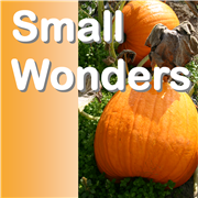 Bishop Scott Jones, Stephanie Caro preach at Small Wonders conference